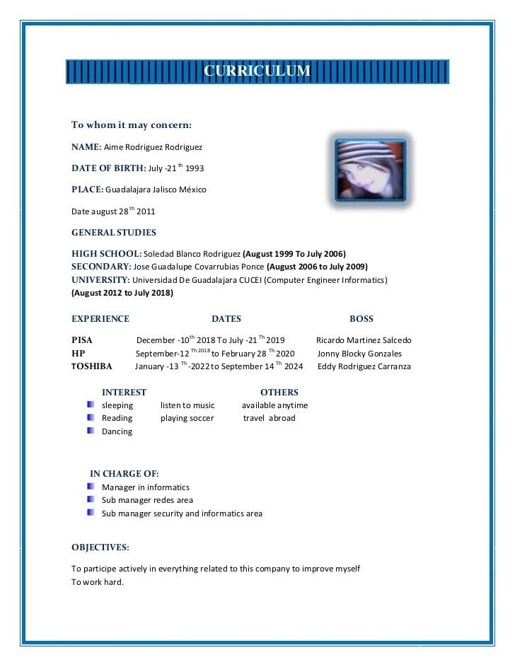 Curriculum Vitae Pdf Que Es Sample Refference Letters