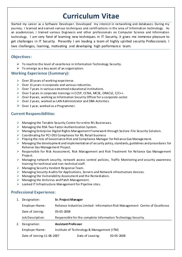 security professional resume template
