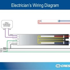 Legrand Emergency Lighting Test Switch Wiring Diagram Dicot Leaf Dali Control Solutions Explained Electrician S