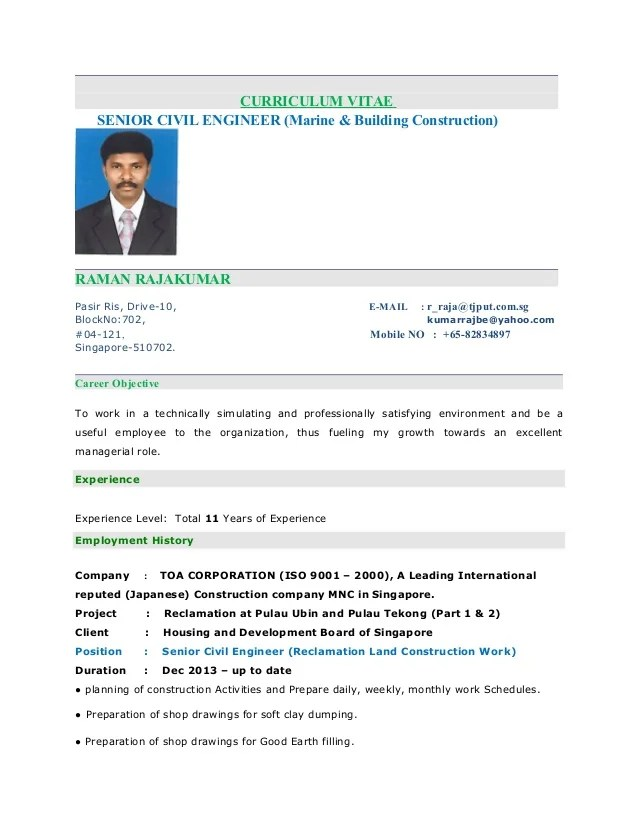 resume format for singapore companies