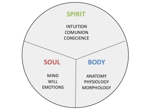 Image result for Soul = mind, soul and emotion pictures