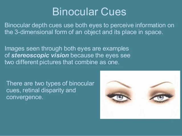 Binocular Psychology Disparity