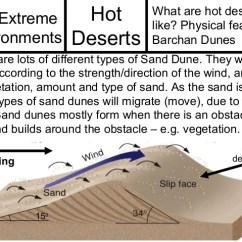 Types Of Sand Dunes Diagram 2007 Dodge Caliber Sxt Radio Wiring Deserts