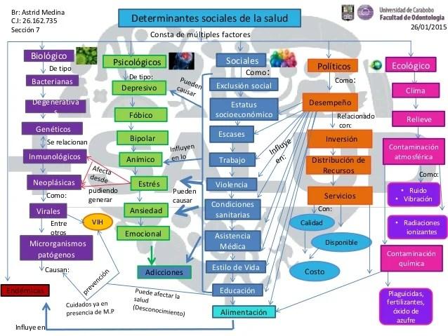 Red Conceptual Determinantes Sociales De La Salud