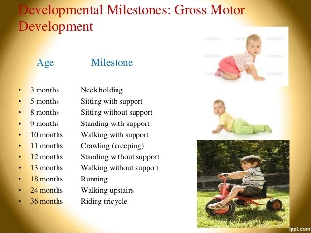 Upstairs riding tricycle fine motor age milestone months also developmental assessment rh slideshare