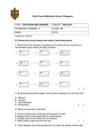 Osmosis Worksheet Biology - Rcnschool