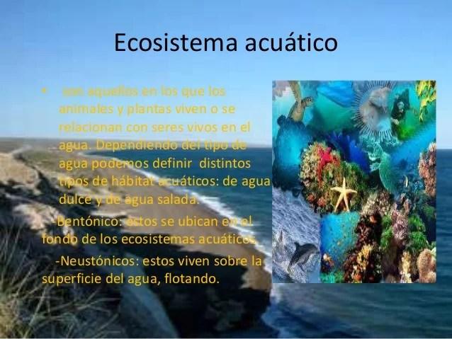 Terrestre Y Ecosistema Acuatico