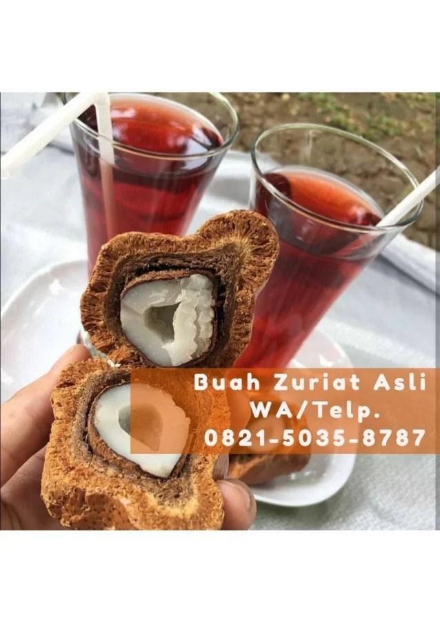 Cara Makan Buah Zuriat : makan, zuriat, 0821-5035-8787, (Tsel), Konsumsi, Zuriat, Untuk, Promil,, Unt…