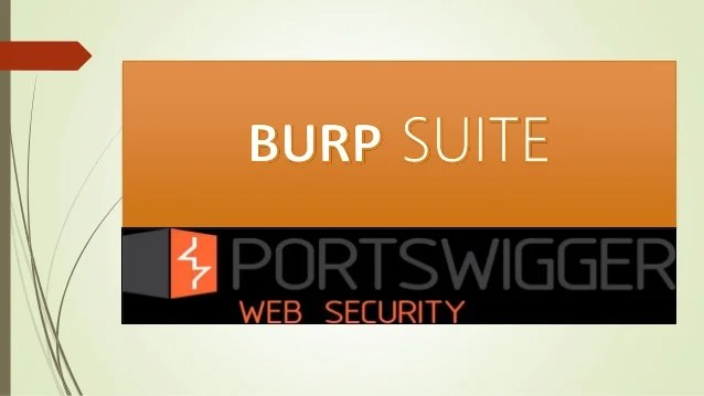 Burp Suite Professional Web Vulnerability Scanner - Resume