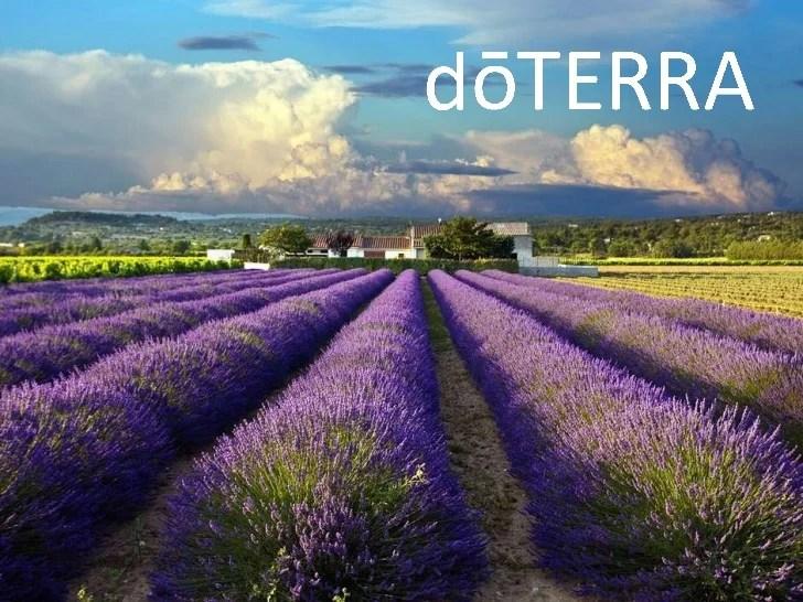 Doterra oils for ear infection myideasbedroom com