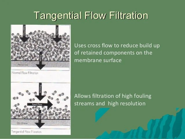 tangential flow filtration