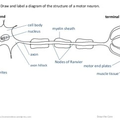 Cell Membrane Diagram Blank 2000 Chevy Blazer Ac Wiring Http://sciencevideos.wordpress.com Draw The Core 626.5.2