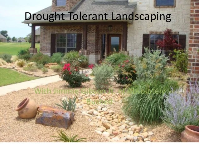 drought tolerant education absolutely