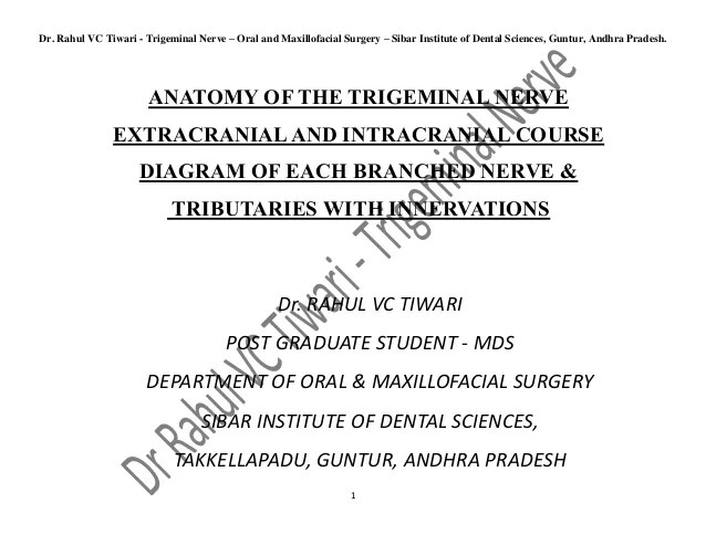 trigeminal nerve diagram starter motor wiring dr rahulvc tiwari diagrams of intracranial and extracranial course o omfs sids guntur