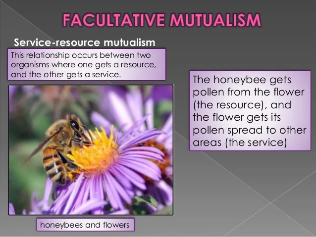 Mutualism And Neutralism