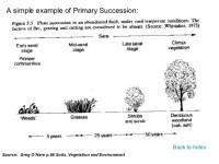 Ecological Succession Worksheet. Worksheets. Releaseboard ...
