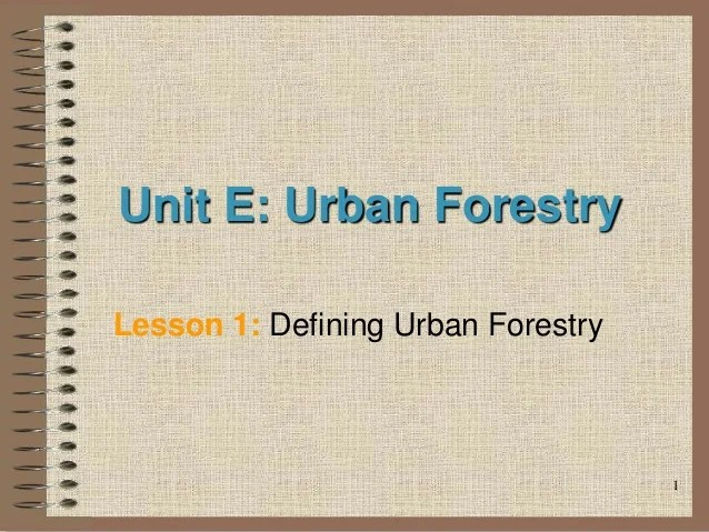 This urban forest is part of london's green infrastructure. Urban Forestry Afghanistan