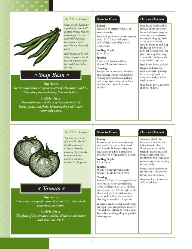 salsa planting guide also to growing school gardens in alberta rh slideshare