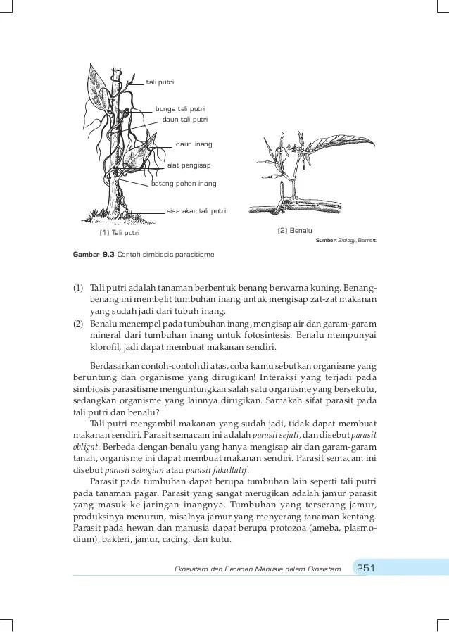 Ekosistem kelas1 biologi