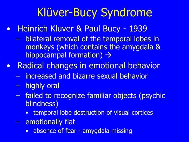 Αποτέλεσμα εικόνας για σύνδρομο Kluver-Bucy¨.