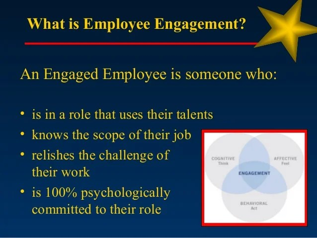 Employee Engagement Overview Of Findings