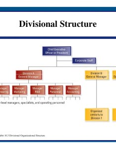 Sm lecture nine part creating effective organizational designs  divisional structure examples also picsbud rh
