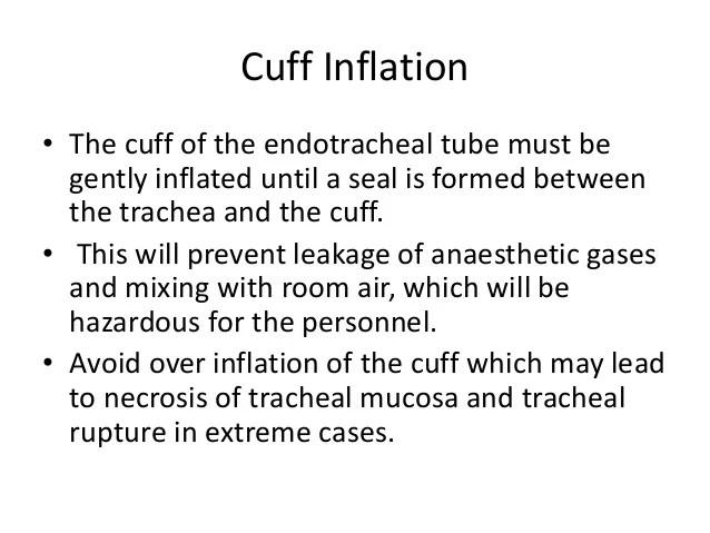 also endotracheal intubation in pets rh slideshare