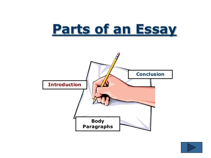 essay writing sandwich diagram lei quad bike wiring the process 6 parts of an conclusionintroduction