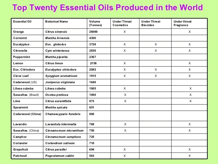 Citriodora ginger agarwood top twenty essential oils also presentation rh slideshare