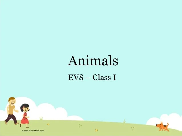 also environmental science evs animals class  rh slideshare