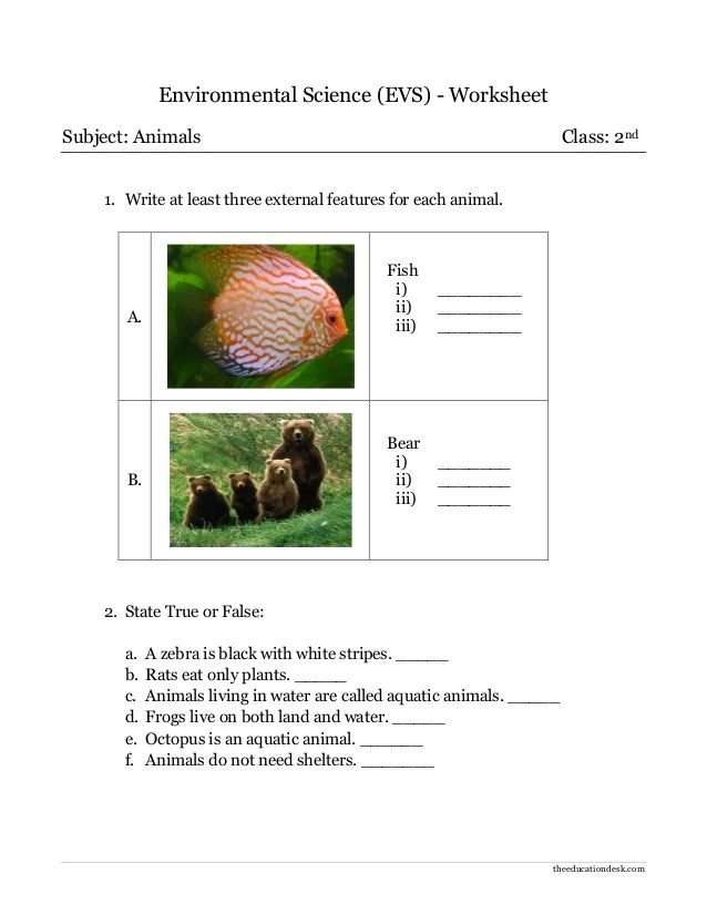 also environmental science evs animals worksheet class ii rh slideshare