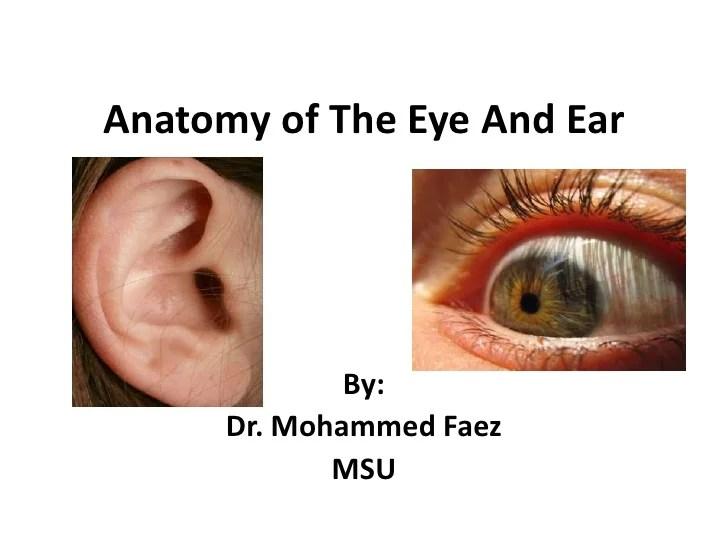 Eye + ear