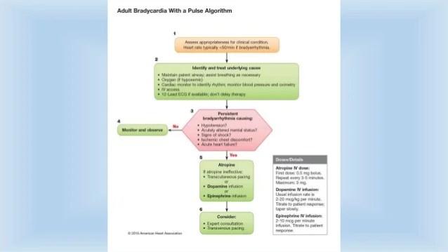 Approach to bradycardia