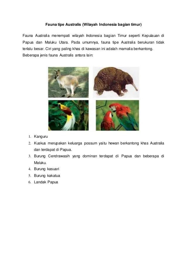 Perbedaan fauna asiatis peralihan dan australis