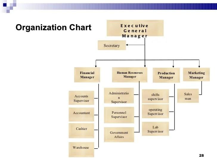 Organization chart also feasibility studies rh slideshare