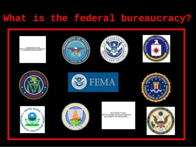 Federal bureaucracy ver1_ppt