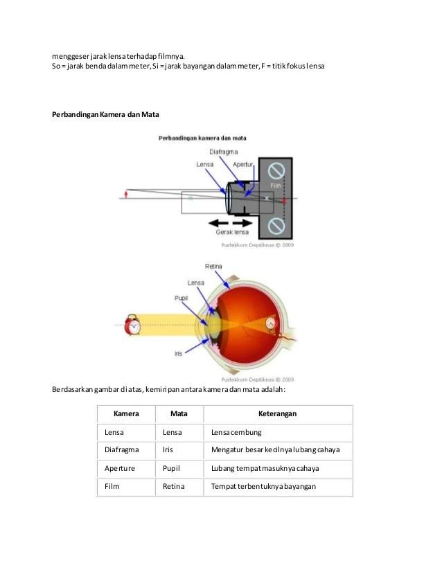 Persamaan Dan Perbedaan Mata Dan Kamera : persamaan, perbedaan, kamera, Persamaan, Fungsi, Bagian, Kamera, Berbagai