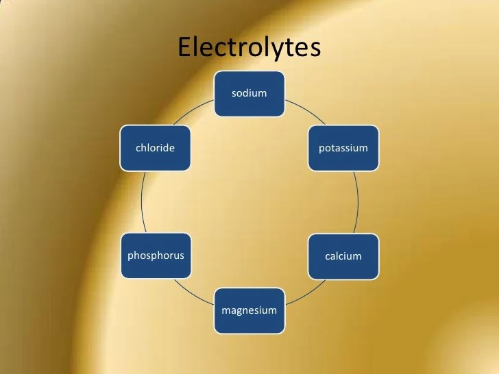 Image result for electolites