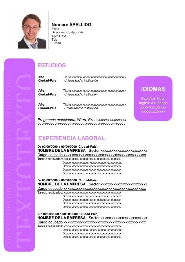 Formato De Curriculum Vitae Word Para Llenar Sample Resume Service