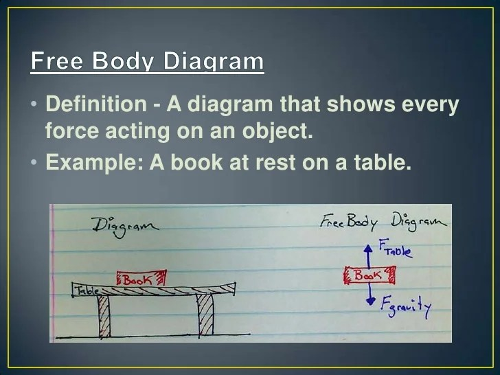 A Body Diagram