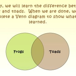 Frog And Toad Venn Diagram 2004 Chevrolet Silverado Stereo Wiring Frogs Toads By Stacy Hurney Flower Valley Elementary 2