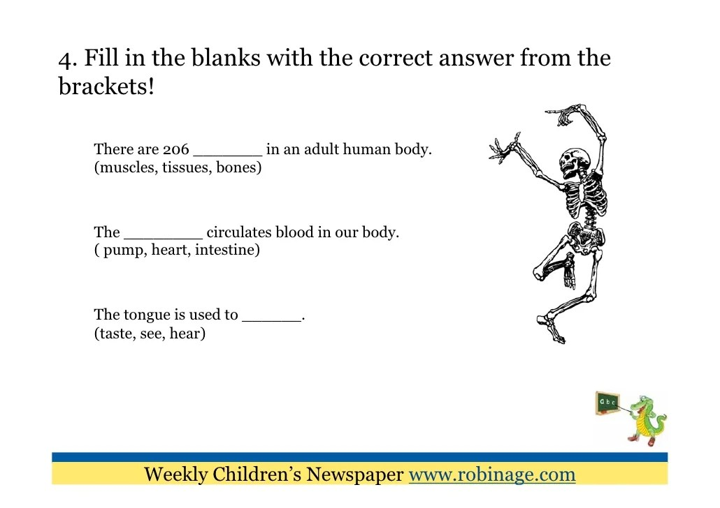 the human skeleton diagram fill in blanks three line electrical fun learning for kids parts of body weekly children s newspaper www robinage com 5 4