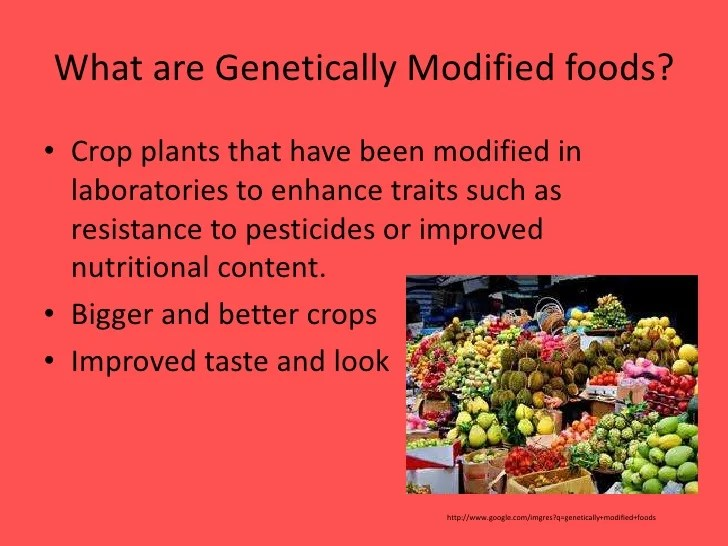 genetically modified food and crops essay Introduction to genetically modified organisms (gmos) a genetically modified organism (gmo) is an organism or microorganism whose genetic material has been altered to contain a segment of dna from another organism.