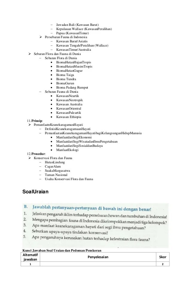 Upaya Konservasi Flora Dan Fauna : upaya, konservasi, flora, fauna, Sebutkan, Upaya, Tindakan, Konservasi, Flora, Fauna