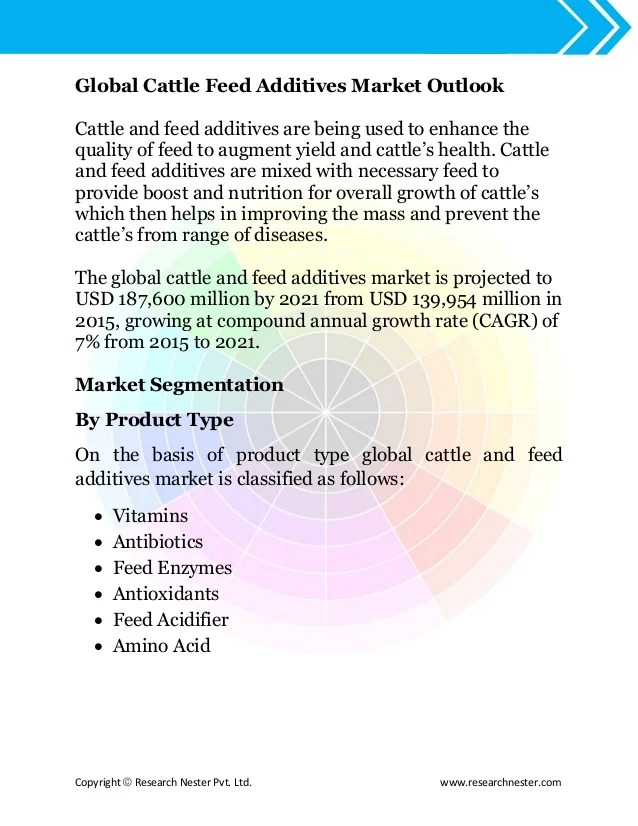 Global Cattle Feed Additive Market Size Demand Growth