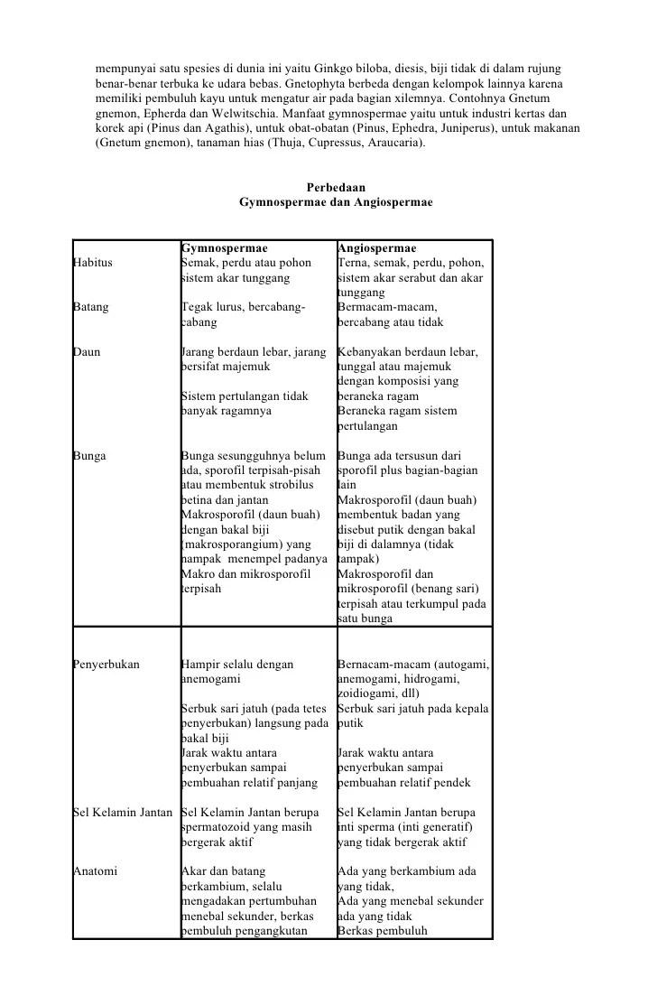 Perbedaan Angiospermae Dan Gymnospermae : perbedaan, angiospermae, gymnospermae, Gymnospermae