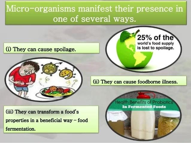 History of microorganisms in food