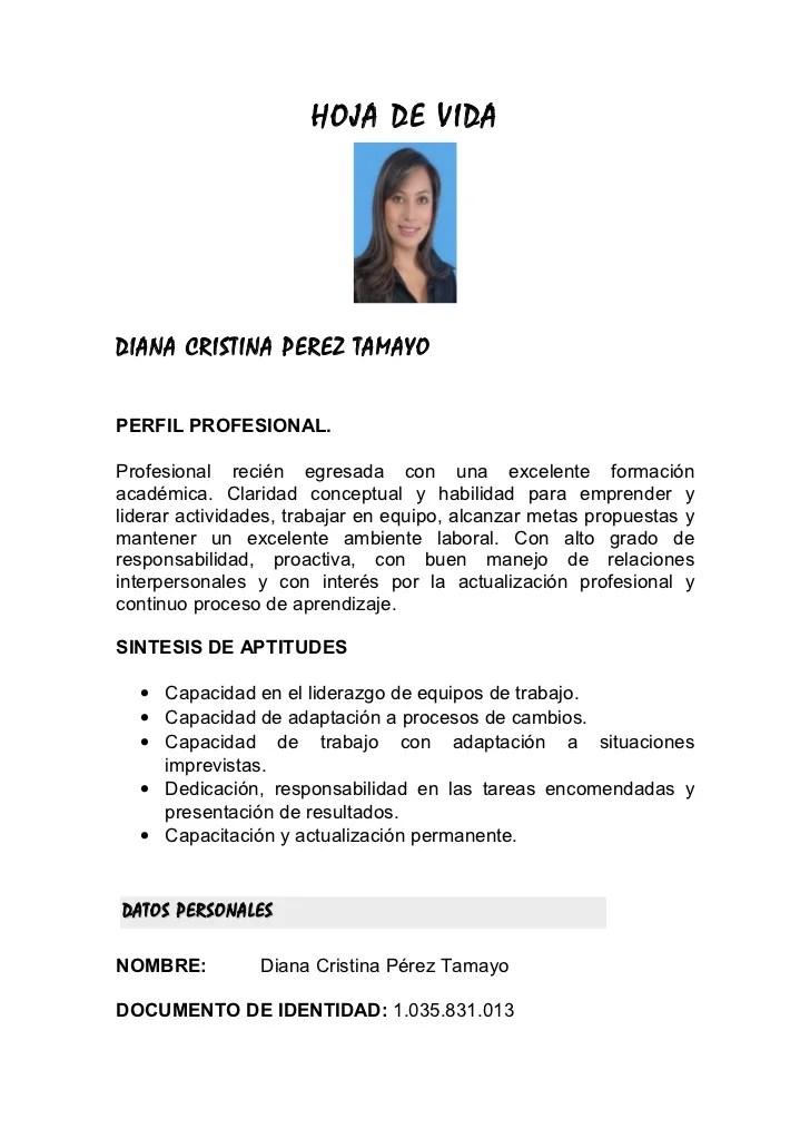 Ejemplo Hoja De Vida Ingeniero Quimico Sample Resume Service