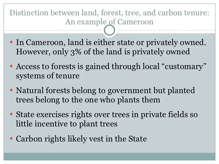 Securing Land, Forest, Tree and Carbon Tenure for REDD+ ...
