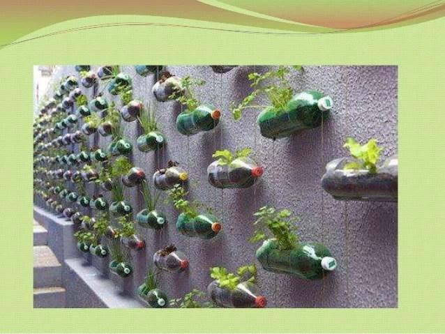 Ideas ecolgicas